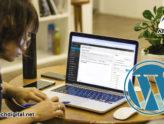 Ventajas de WordPress que te ayudan a desarrollar y optimizar tu sitio web 1